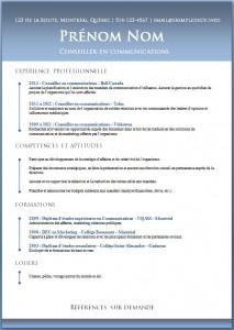 Exemple de CV #462