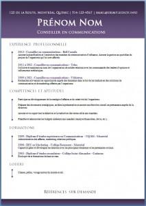Exemple de CV #465