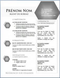 Exemple de CV #445
