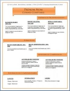 Modèle de CV #467