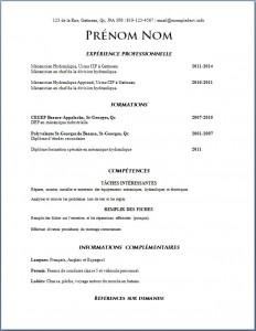 Exemple de CV #578