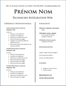 Exemple de CV #598