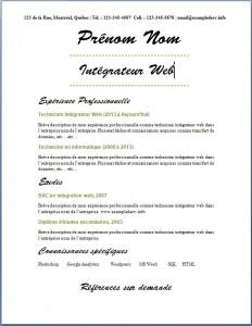 Exemple de CV #521