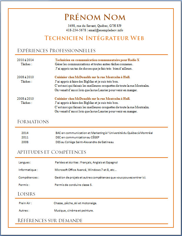 exemple d un cv professionnel word
