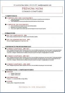 Exemple de CV #546