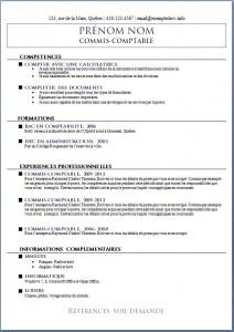 Exemple de CV #548