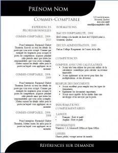 Exemple de CV #501