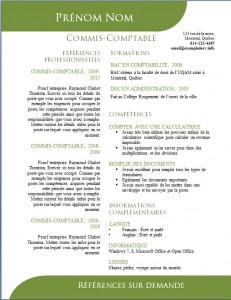 Exemple de CV #504