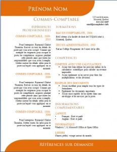 Exemple de CV #506