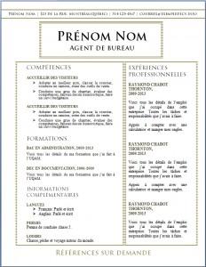Exemple de CV #515