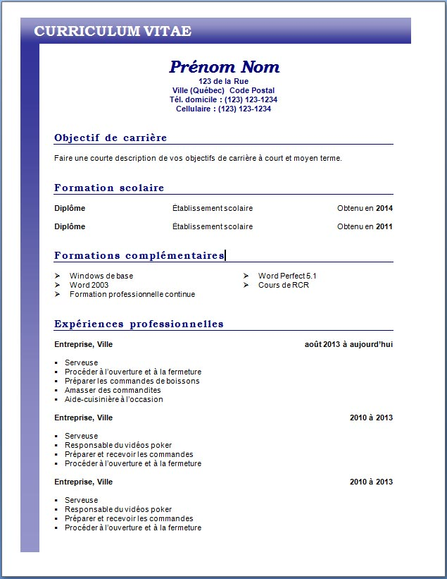 example resume  exemple cv belgique