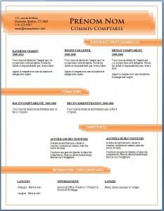 Exemple de CV #684