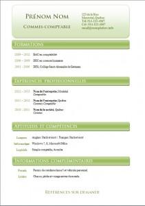 Exemple et modèle de cv gatuit #798