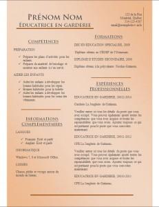 Exemple de CV #785