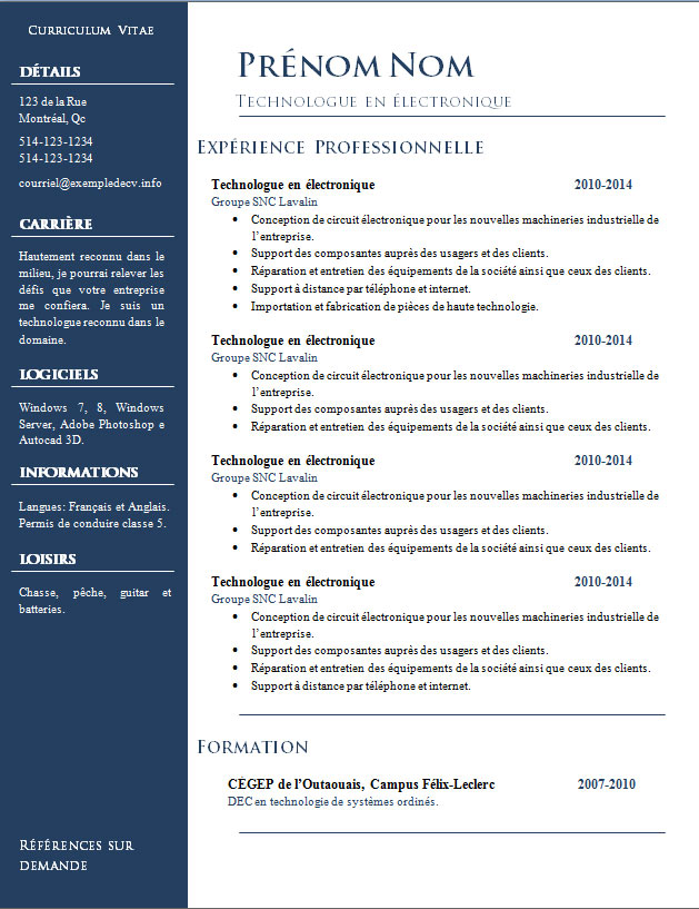 exemple cv 2014 word