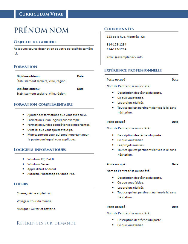resume format  mod u00e8les de cv professionnels gratuits