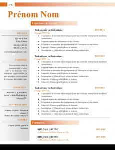 Modele-de-cv-word-884-page0001