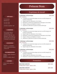 modele_de_cv_word_887-page0001