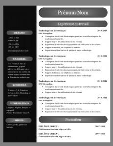 modele_de_cv_word_890-page0001