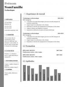modele_de_cv_word_896-page0001