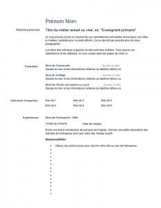 modele_de_cv_vierge-page0001