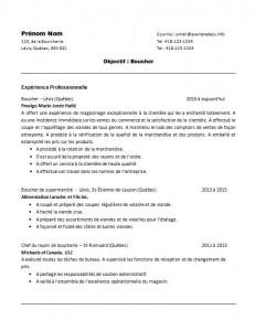 curriculum_vitae_de_boucher_page1
