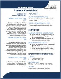 Exemple et modèle word gratuit de CV #105
