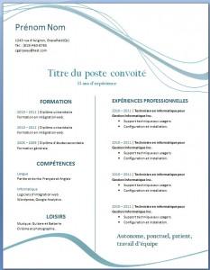 Exemple de CV #20
