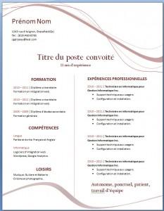 Exemple de CV #21