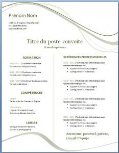 Exemple de CV #24