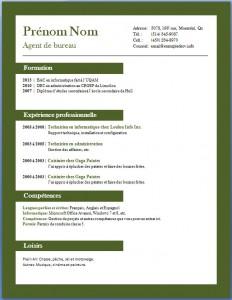 Exemple et modèle de CV gratuit #69