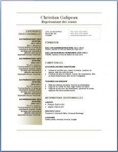 Exemple et modèle de CV gratuit #75