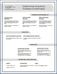 Exemple et modèle de CV gratuit #82