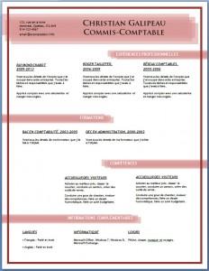 Exemple et modèle de CV gratuit #84