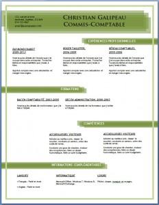 Exemple et modèle de CV gratuit #85