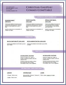 Exemple et modèle de CV gratuit #86