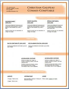 Exemple et modèle de CV gratuit #88