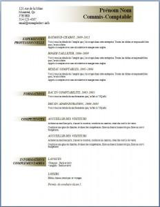 Exemple et modèle de CV gratuit #91