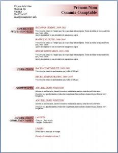 Exemple et modèle de CV gratuit #92
