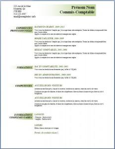 Exemple et modèle de CV gratuit #93