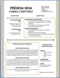 Exemple et modèle word gratuit de CV #123