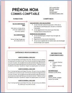 Exemple et modèle word gratuit de CV #124