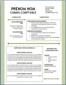 Exemple et modèle word gratuit de CV #125