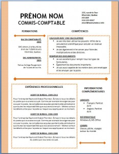 Exemple et modèle word gratuit de CV #127