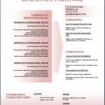 Modèle et exemple de CV #152