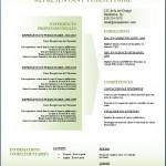 Modèle et exemple de CV #153