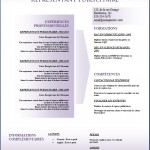 Modèle et exemple de CV #154