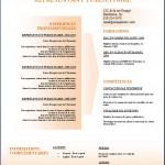 Modèle et exemple de CV #155