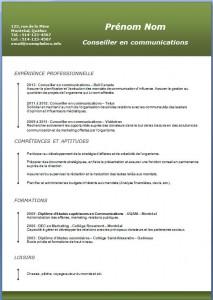Exemple et modèle de CV gratuit #191
