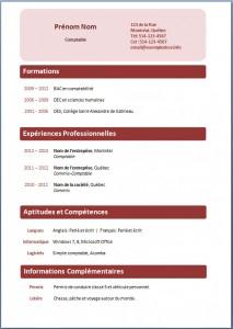 Exemple de CV #215